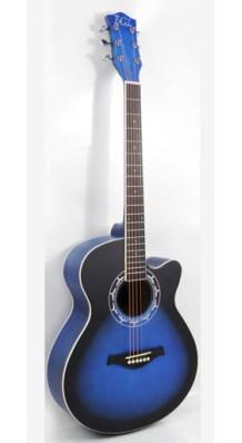 Фото BGL BTL-11OM (Акустическая гитара, цвет черно-синий)