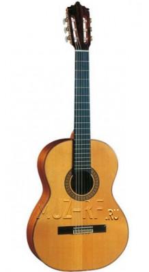 Фото HOHNER HC20 (Полноразмерная гитара Классика с нейлоновыми струнами)