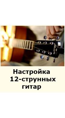 Фото НАСТРОЙКА 12-СТРУННЫХ ГИТАР (Услуги по настройке всех типов 12-ти струнных гитар)